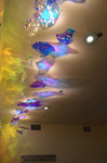 Ceiling Fish by Tom Bergeron