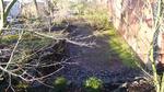 River Bed Garden